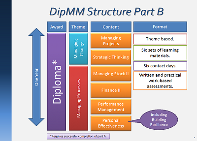 DipMM Structure Part B